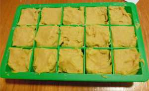 Cheez in Silicone Ice Cube Trays