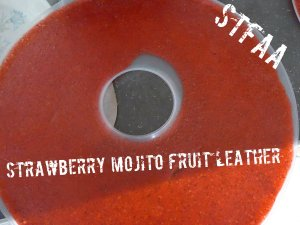 Strawberry Mojito Fruit Leather